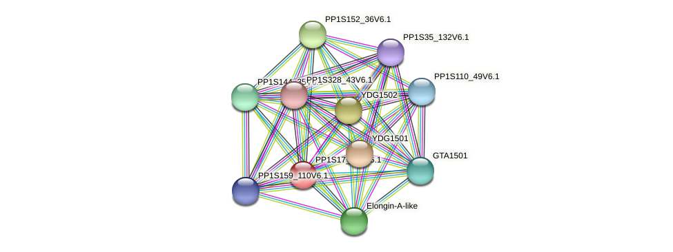 PP1S17_379V6.1 protein (Physcomitrella patens) - STRING interaction network
