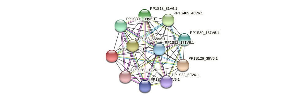 PP1S17_61V6.1 protein (Physcomitrella patens) - STRING interaction network
