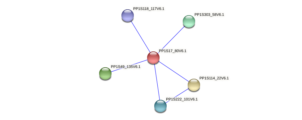 PP1S17_80V6.1 protein (Physcomitrella patens) - STRING interaction network