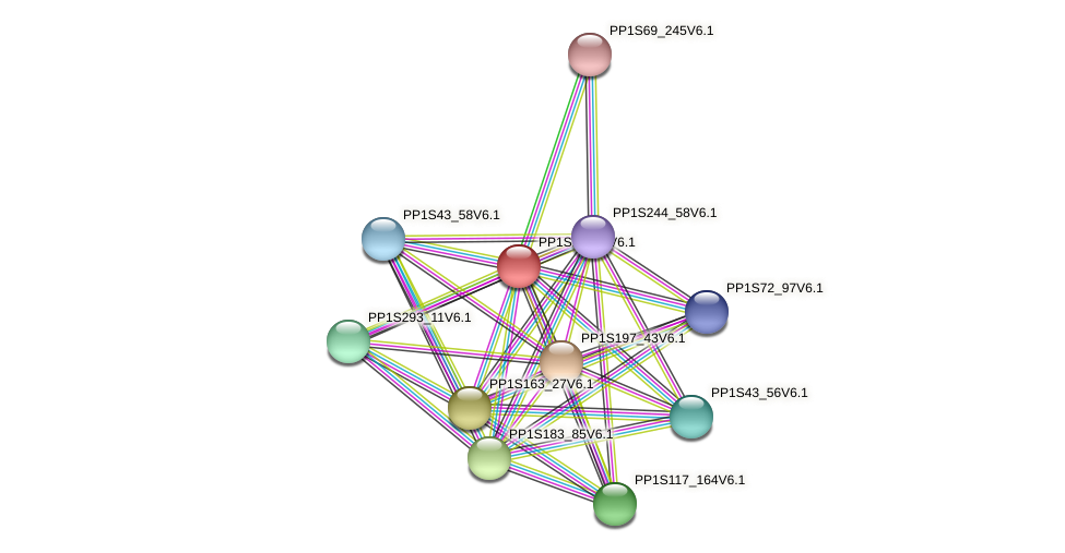 PP1S17_95V6.1 protein (Physcomitrella patens) - STRING interaction network