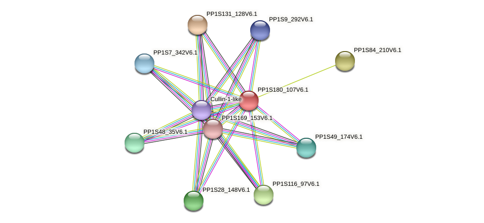 PP1S180_107V6.1 protein (Physcomitrella patens) - STRING interaction network