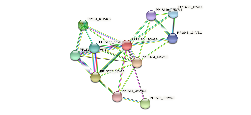PP1S180_110V6.1 protein (Physcomitrella patens) - STRING interaction network