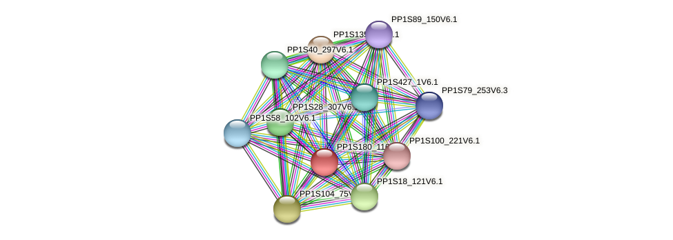 PP1S180_116V6.1 protein (Physcomitrella patens) - STRING interaction network
