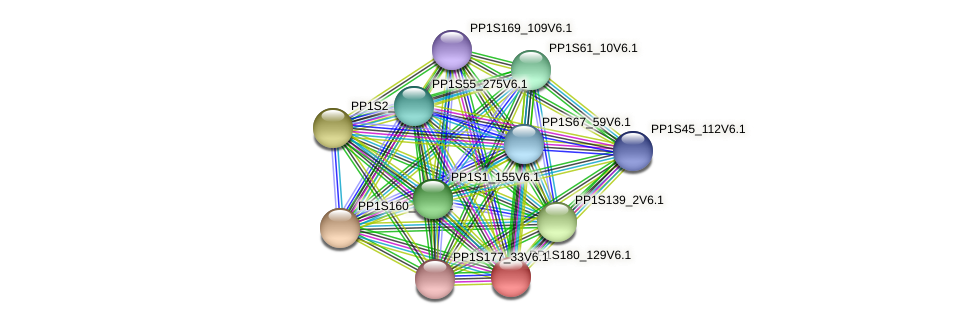 PP1S180_129V6.1 protein (Physcomitrella patens) - STRING interaction network