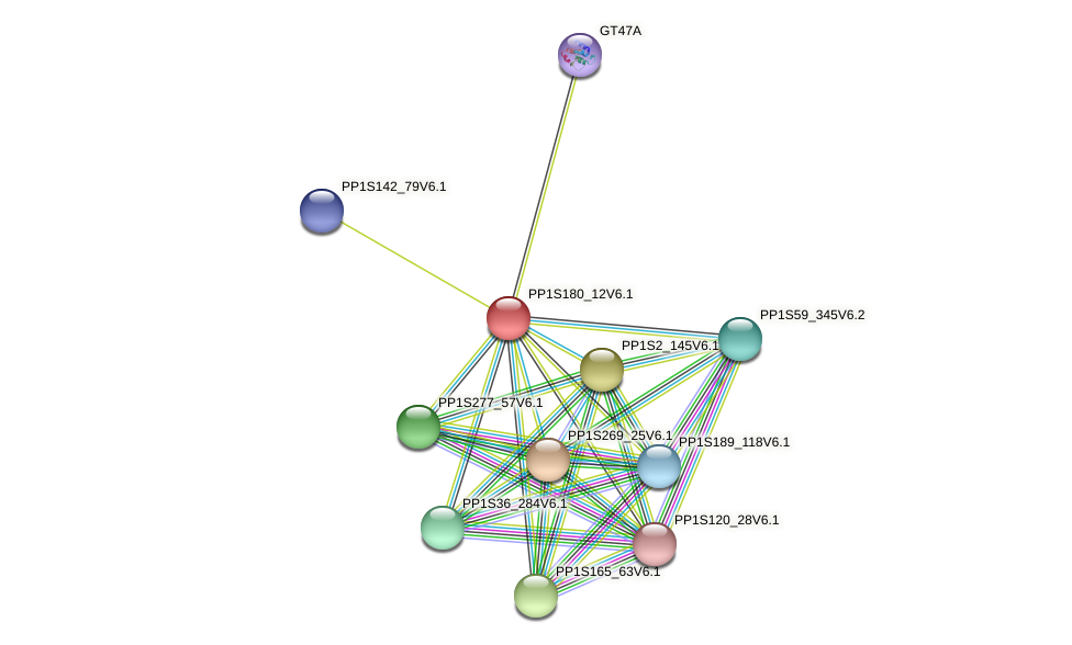 PP1S180_12V6.1 protein (Physcomitrella patens) - STRING interaction network