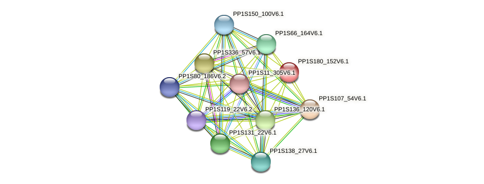 PP1S180_152V6.1 protein (Physcomitrella patens) - STRING interaction network