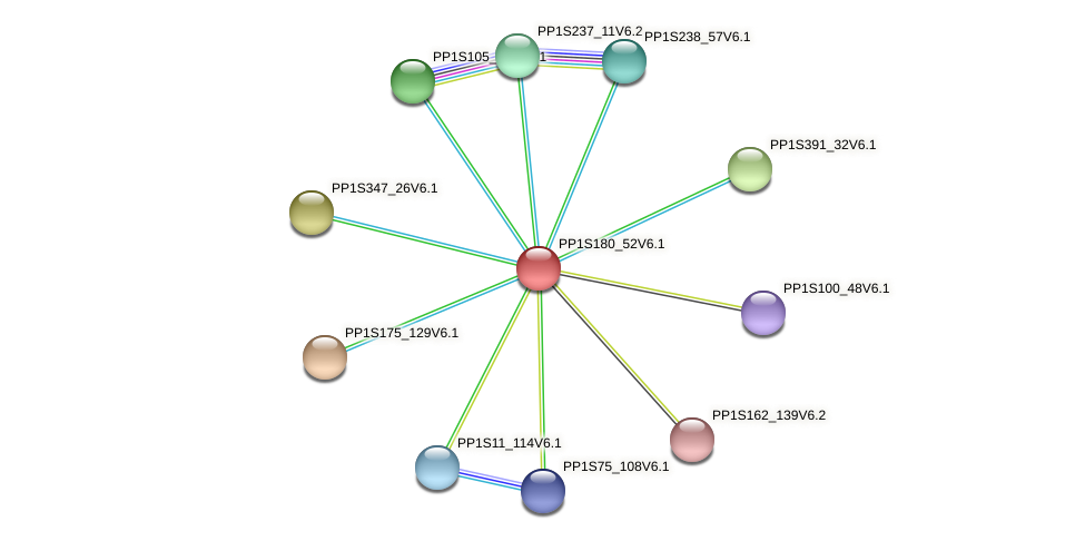 PP1S180_52V6.1 protein (Physcomitrella patens) - STRING interaction network