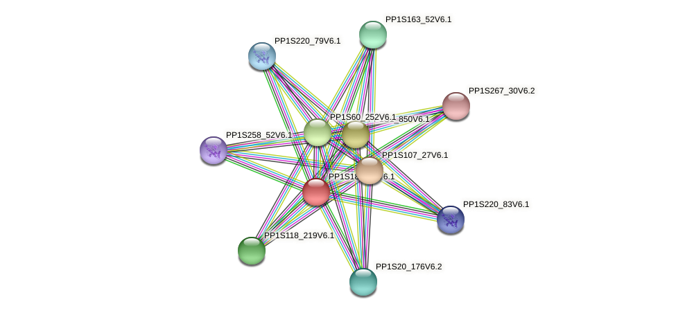 PP1S181_43V6.1 protein (Physcomitrella patens) - STRING interaction network