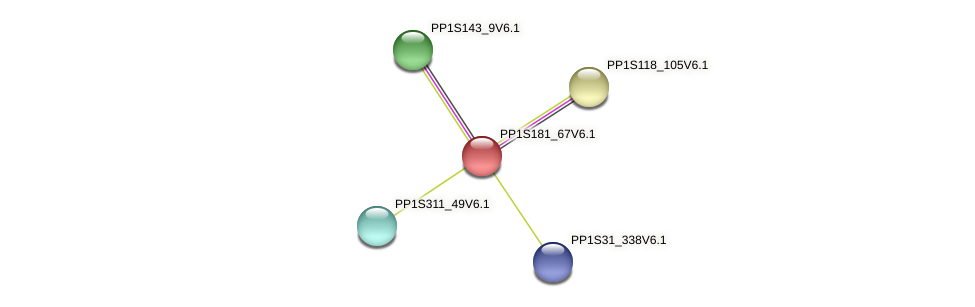 PP1S181_67V6.1 protein (Physcomitrella patens) - STRING interaction network
