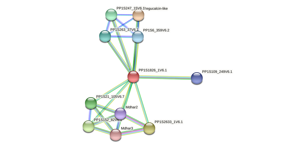 PP1S1826_1V6.1 protein (Physcomitrella patens) - STRING interaction network