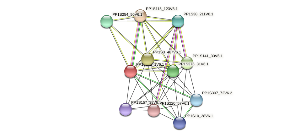 PP1S182_1V6.1 protein (Physcomitrella patens) - STRING interaction network