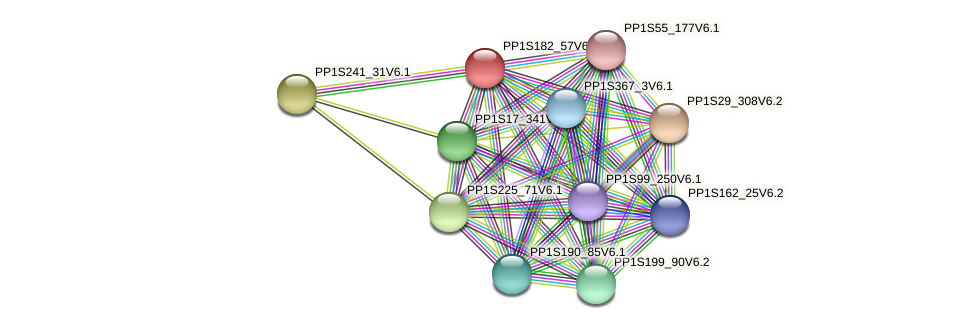 PP1S182_57V6.1 protein (Physcomitrella patens) - STRING interaction network