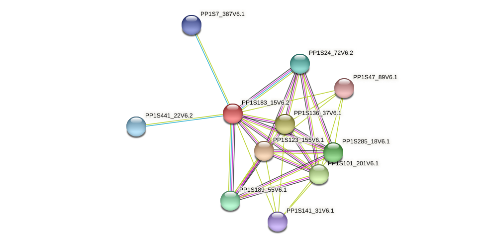 PP1S183_15V6.1 protein (Physcomitrella patens) - STRING interaction network