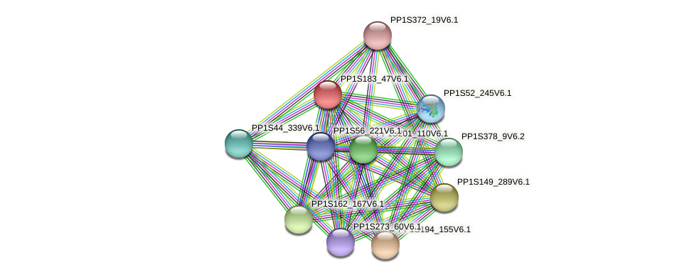 PP1S183_47V6.1 protein (Physcomitrella patens) - STRING interaction network