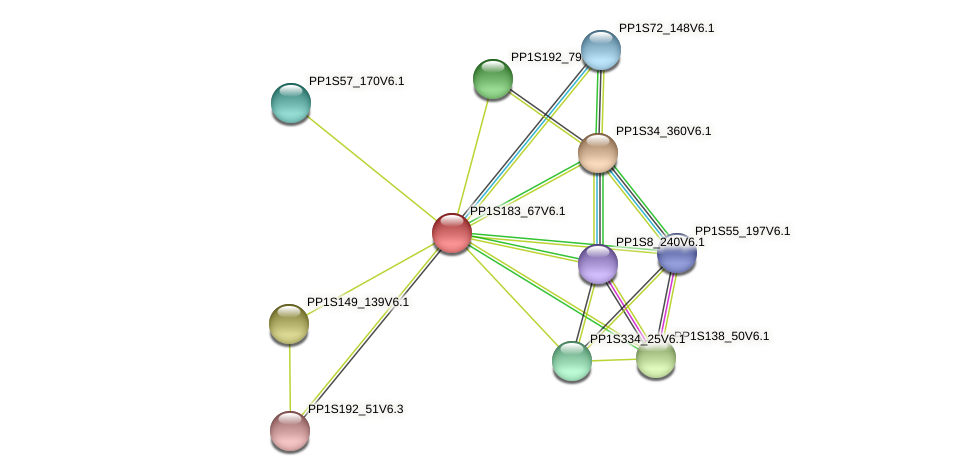PP1S183_67V6.1 protein (Physcomitrella patens) - STRING interaction network