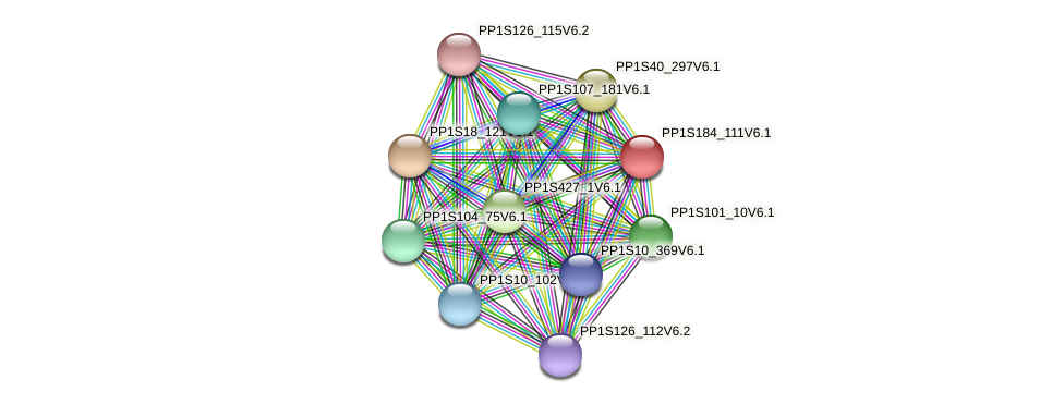 PP1S184_111V6.1 protein (Physcomitrella patens) - STRING interaction network