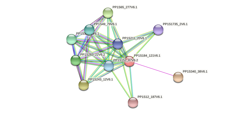 PP1S184_121V6.1 protein (Physcomitrella patens) - STRING interaction network