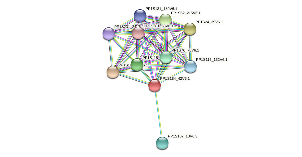 PP1S184_42V6.1 protein (Physcomitrella patens) - STRING interaction network