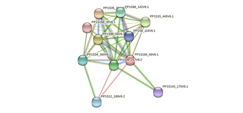 PP1S184_69V6.1 protein (Physcomitrella patens) - STRING interaction network