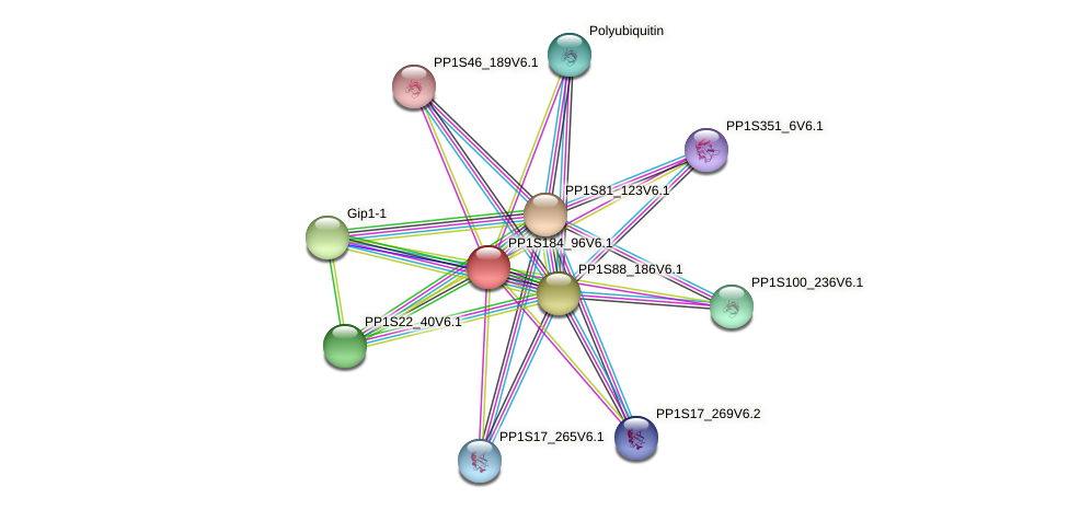 PP1S184_96V6.1 protein (Physcomitrella patens) - STRING interaction network