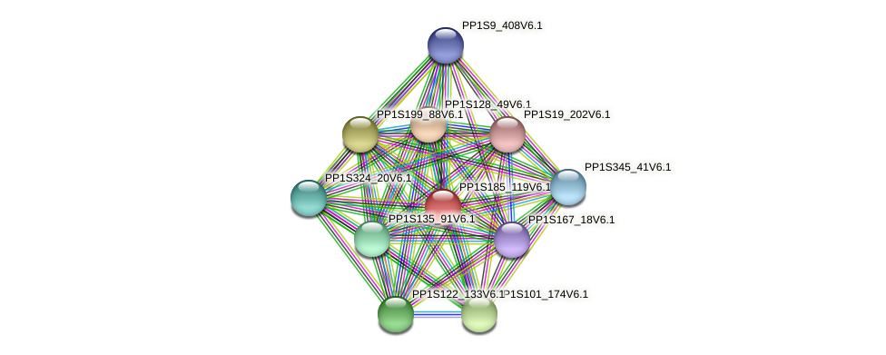 PP1S185_119V6.1 protein (Physcomitrella patens) - STRING interaction network