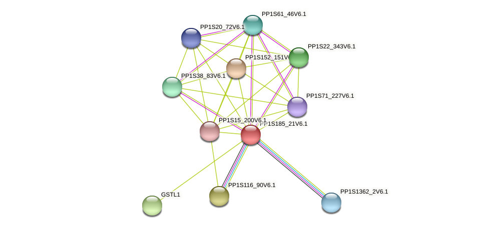 PP1S185_21V6.1 protein (Physcomitrella patens) - STRING interaction network