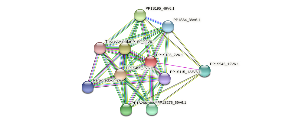 PP1S185_2V6.1 protein (Physcomitrella patens) - STRING interaction network