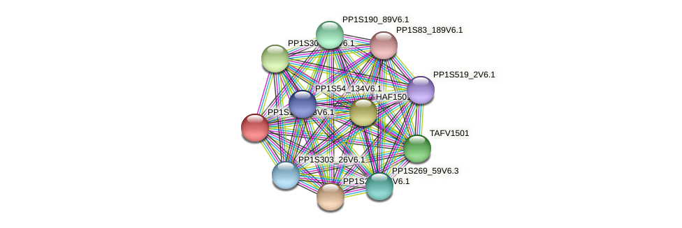 PP1S185_43V6.1 protein (Physcomitrella patens) - STRING interaction network