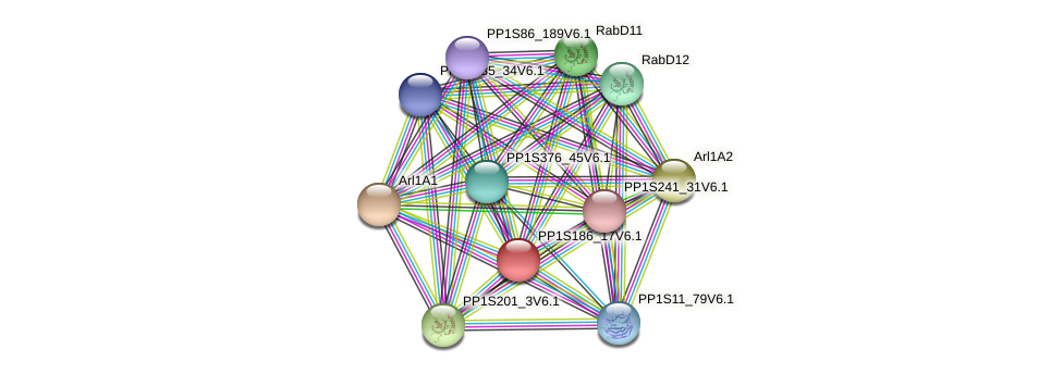 PP1S186_17V6.1 protein (Physcomitrella patens) - STRING interaction network