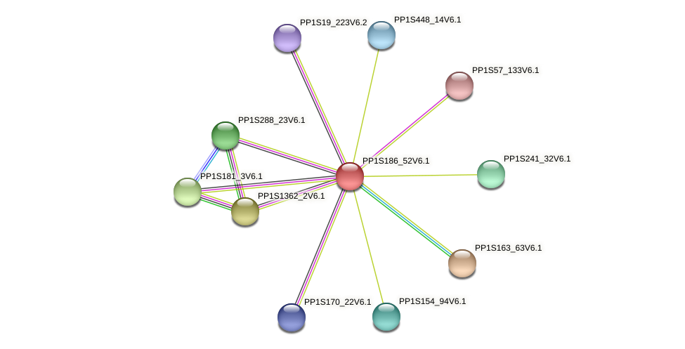 PP1S186_52V6.1 protein (Physcomitrella patens) - STRING interaction network