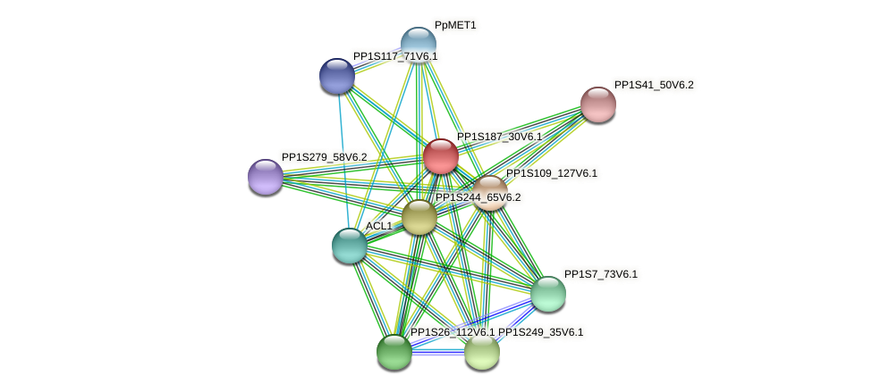 PP1S187_30V6.1 protein (Physcomitrella patens) - STRING interaction network