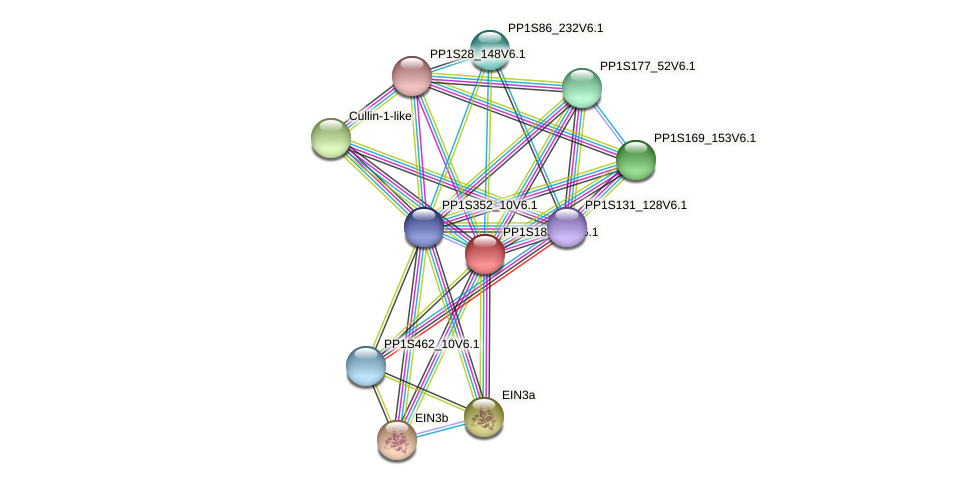 PP1S188_33V6.1 protein (Physcomitrella patens) - STRING interaction network