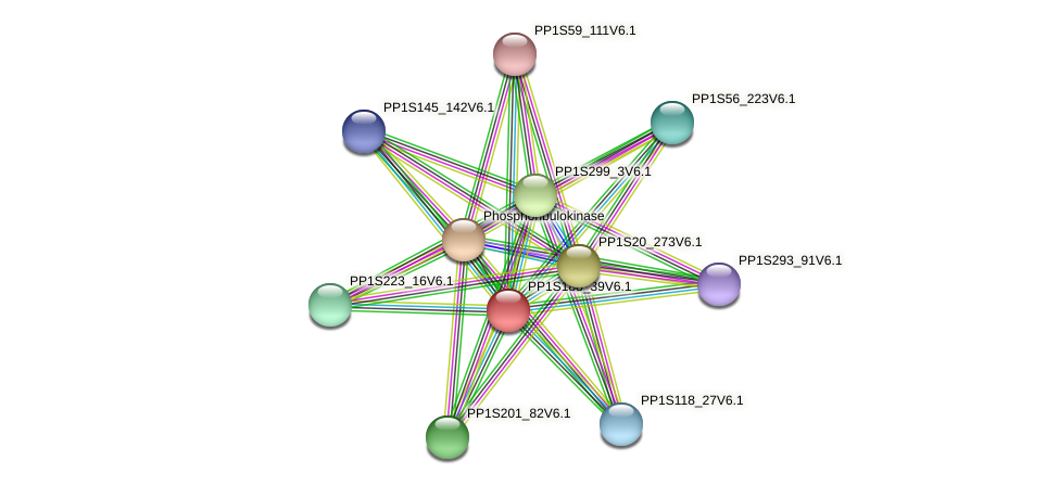 PP1S188_39V6.1 protein (Physcomitrella patens) - STRING interaction network