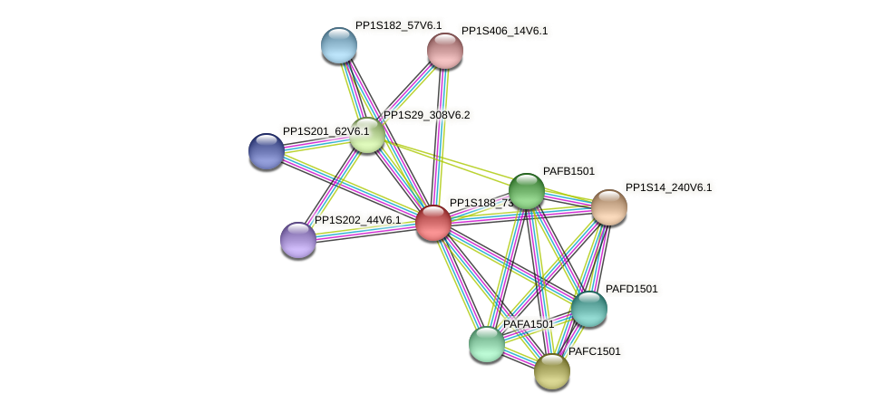 PP1S188_73V6.1 protein (Physcomitrella patens) - STRING interaction network