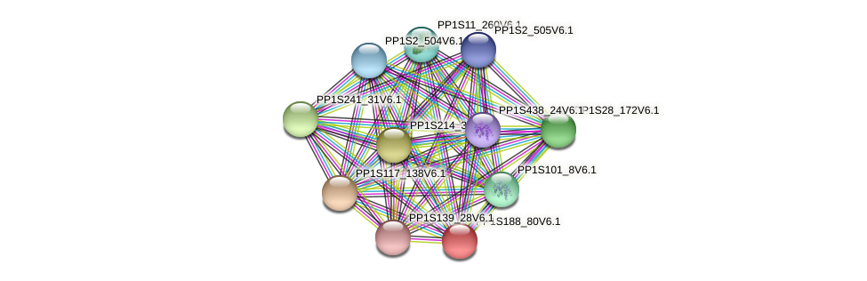 PP1S188_80V6.1 protein (Physcomitrella patens) - STRING interaction network