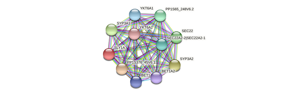 SLY1A protein (Physcomitrella patens) - STRING interaction network