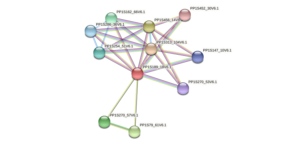 PP1S189_18V6.1 protein (Physcomitrella patens) - STRING interaction network