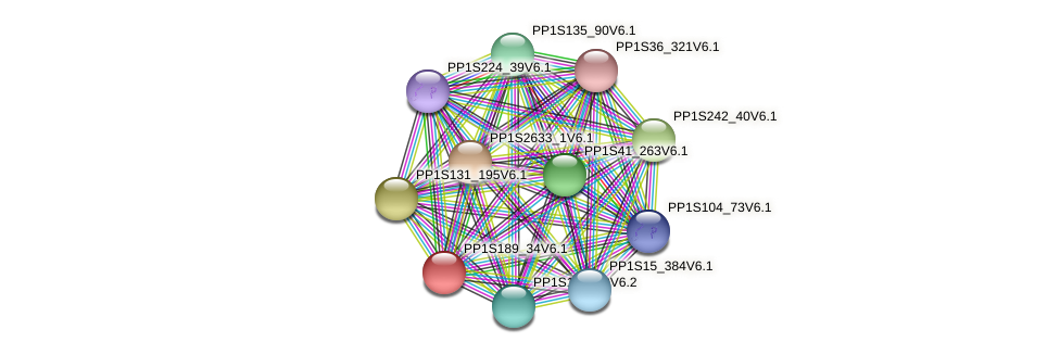 PP1S189_34V6.1 protein (Physcomitrella patens) - STRING interaction network