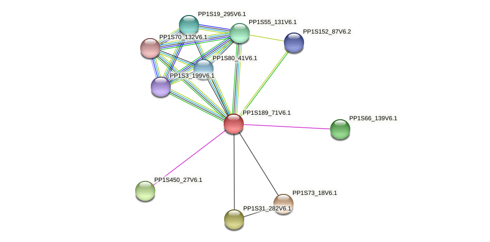 PP1S189_71V6.1 protein (Physcomitrella patens) - STRING interaction network