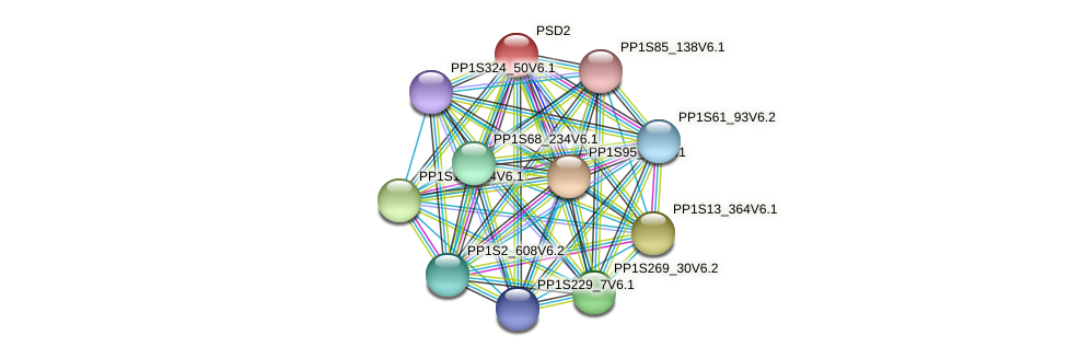 PP1S189_73V6.1 protein (Physcomitrella patens) - STRING interaction network