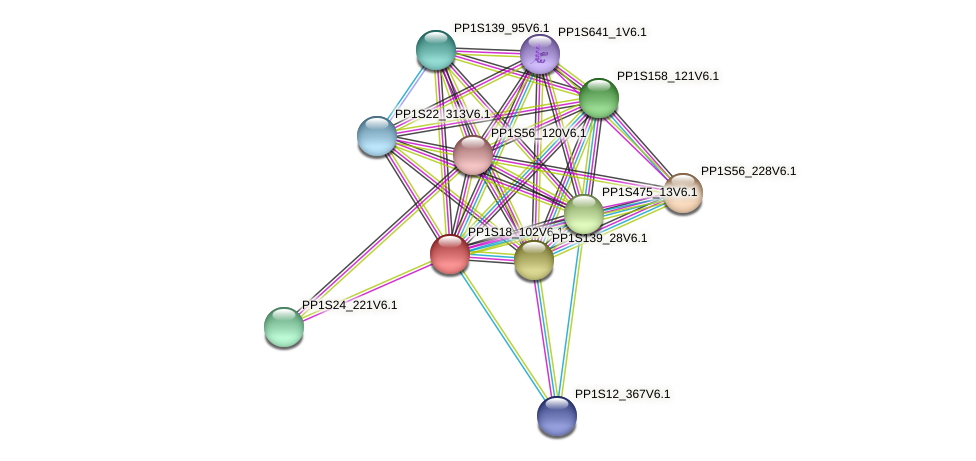 PP1S18_102V6.1 protein (Physcomitrella patens) - STRING interaction network