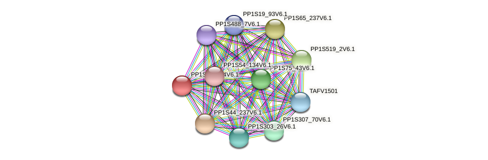 PP1S18_124V6.1 protein (Physcomitrella patens) - STRING interaction network