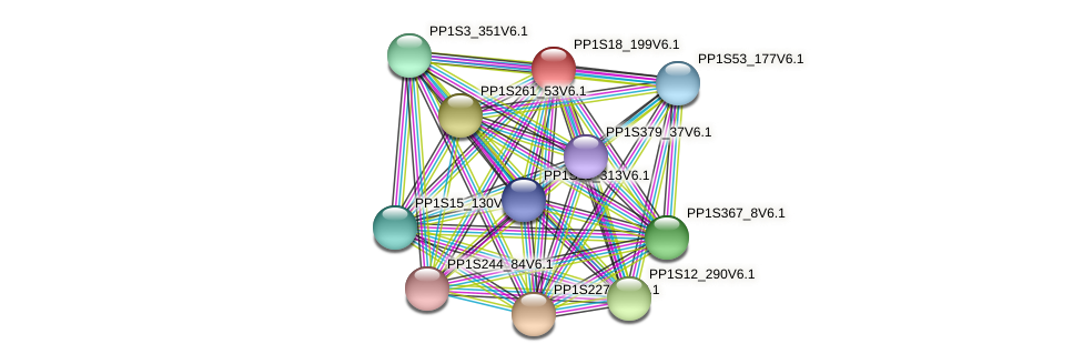 PP1S18_199V6.1 protein (Physcomitrella patens) - STRING interaction network