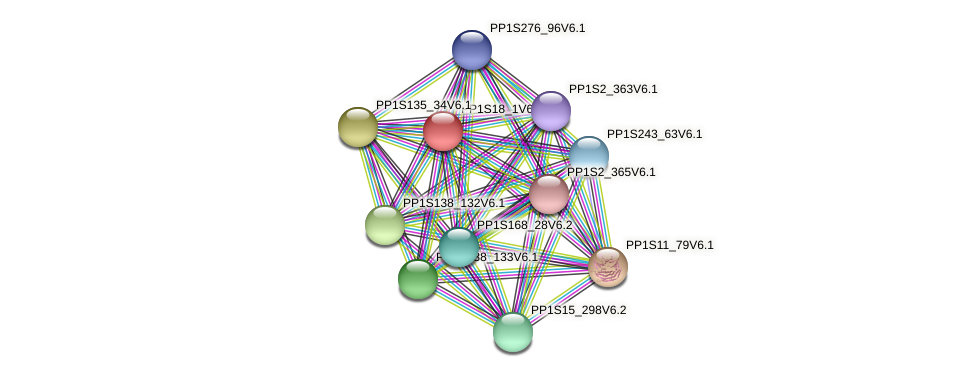 PP1S18_1V6.1 protein (Physcomitrella patens) - STRING interaction network