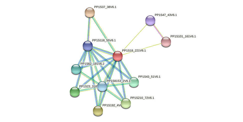 PP1S18_221V6.1 protein (Physcomitrella patens) - STRING interaction network