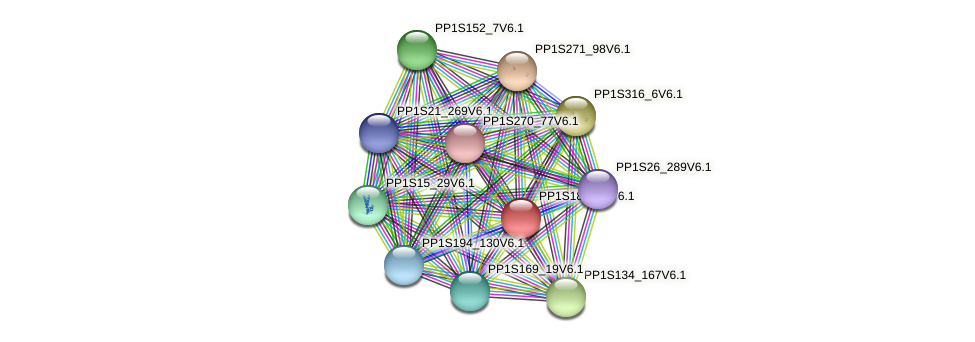 PP1S18_236V6.1 protein (Physcomitrella patens) - STRING interaction network