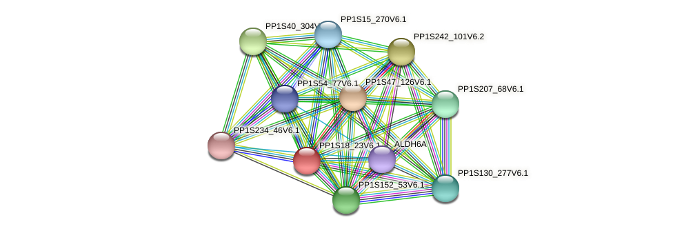 PP1S18_23V6.1 protein (Physcomitrella patens) - STRING interaction network