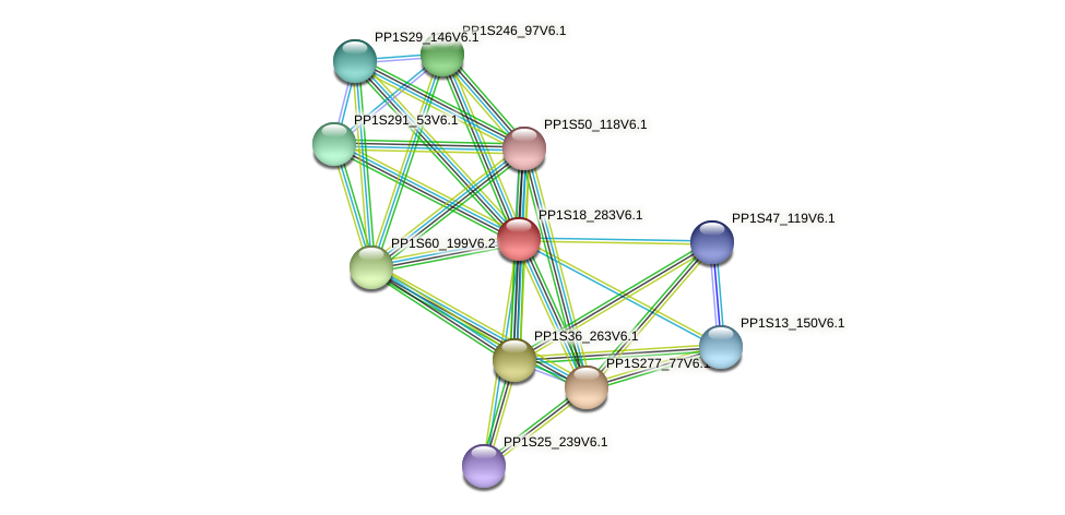 PP1S18_283V6.1 protein (Physcomitrella patens) - STRING interaction network