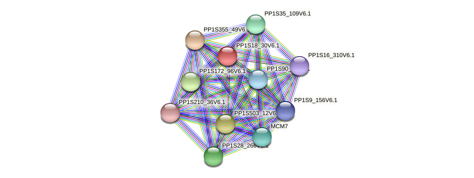 PP1S18_30V6.1 protein (Physcomitrella patens) - STRING interaction network