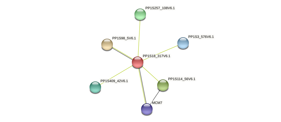 PP1S18_317V6.1 protein (Physcomitrella patens) - STRING interaction network
